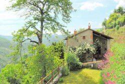 Vakantie accommodatie Noord-Italië,Toscane,Pisa-Lucca en omgeving Italië 4 personen